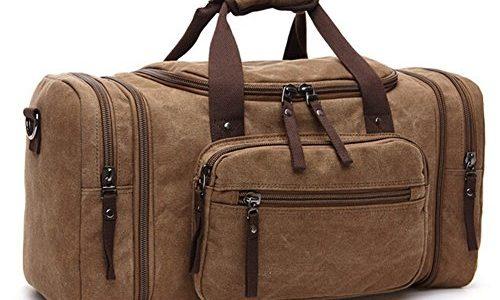Cartoon Dinosaur Travel Carry-on Luggage Weekender Bag Overnight Tote Flight Duffel In Trolley Handle